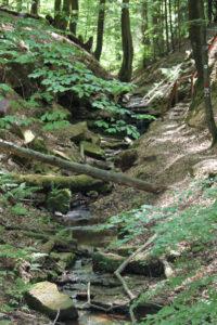 Eldendsklamm ravine near Bruchmühlbach