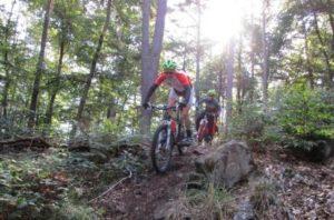 Bikers on Mountainbike trail Landstuhl