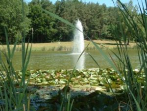Fountain on Seewoog Lake in Miesenbach