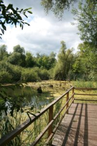 Erdekaut Ecological Park Eisenberg